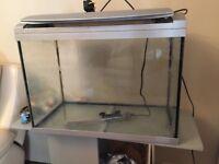 Glass fish aquarium with stand and AquaManta EFX 300 Filter