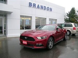 2016 Ford Mustang Coupe Ecoboost Premium **Leather Seats**Heated