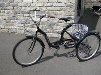Jordik DutchStyle Adults Tricycle