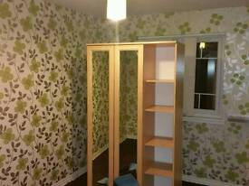 Painter and wallpaper hanging or stripping