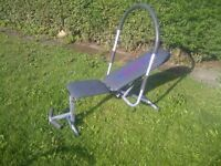 Ab King Pro Ab exercise machine
