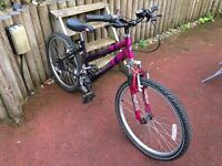 Emmelle Star Girls Mountain bike - Full working order