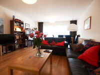 Large & modern 3 double bedroom 2 bathroom ground floor flat with a private terrace on SevenSisters
