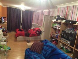 King size double room in Barking £125 pw incl for professional single or couple