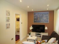 Short Term / Available December 23rd / central London / A very spacious 1 double bedroom apartment