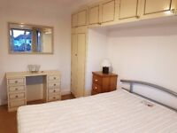 A double room available for a single person in Neasden - £125 pw