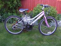 Probike Sapphire Mountain Bike.