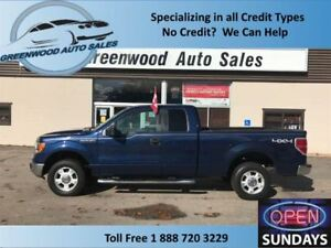2009 Ford F-150 4X4 XLT GREAT VALUE & LOW PRICE POINT!