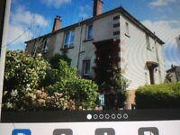 Lower cottage flat dalmarnock