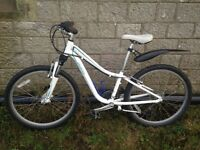Child/youth Specialized mountain bike