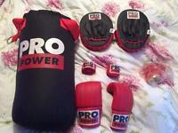 Pro power boxing set
