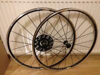 Mavic Aksium Wheelset (NEW) (road bike wheel) (rim brake version)