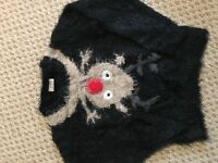 Girls Christmas Jumper - Next