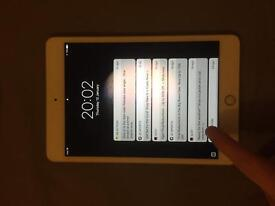 iPad Mini 4 16gb (champagne gold)
