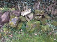 Rockery stone (free)