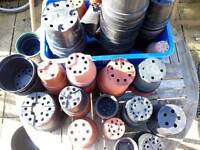 Garden Plant Pots 100s in Various Sizes Plus Plastic Storage Containers