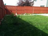 Professional University Snow removal and lawn care service
