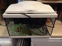 21 litre fish tank and accessories