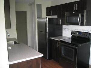 Renovated 1 Bedroom Apartments Available Now