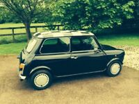 Classic 'Jet Black' Rover Mini. 12 months MOT last week.Recent, Complete Overhaul.