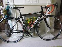 Cinelli Experience Campagnolo Veloce carbon fork road bike - size Small - 50cm