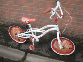 Wildcat Kids Bike