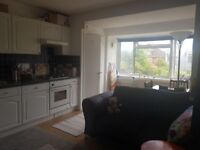 1 Bedroom Flat available