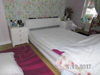 Elan King soft side water bed