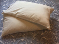 Two Soft Pillows
