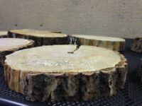Natural Log Slices