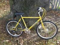 Ammaco Club 200 vintage rare mountain bike cycle Raleigh Bomber Maverick type