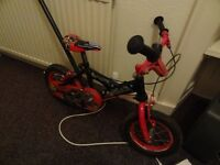 Kids Bike with Adult Steering Stick