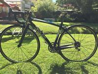 Dolan L'etape Carbon Road Bike Campag Veloce - Excellent Condition