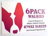 6PACK WALKIES - BRIGHTON COUNCIL REGISTERED