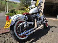 Harley Davidson 883 bobber, unique custom Harley