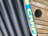Carp Fishing Pole