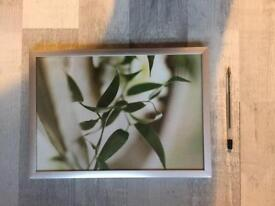 Small flower picture print silver frame good condition