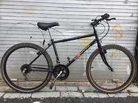 Townsend Topeaka mountain bike