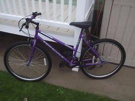 Ladies 19in bicycle