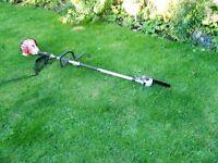 long reach petrol chain saw