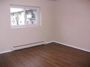 Bright 2 bedroom units available for October 1st. Stratford Kitchener Area image 6