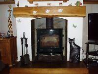 carron multifuel cast iorn stove