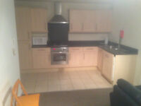 Large modern flat close to University and hospitals, short let accpeted. Start from £50p/d.