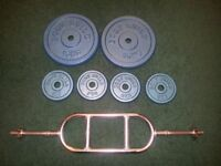 Cast Iron Body Build Weight Plates & Tricep Bar For Sale