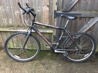 Excel bike for sale