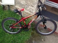 Raleigh child's mountain bike*MINT*
