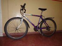 Giant Granite - mountain bike cycle retro old school classic hard tail (size 54 cm)