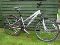 Ladies Mountain Bike in good condition.18 gears.