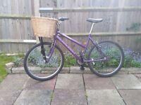Ladies Mountain Bike with Basket