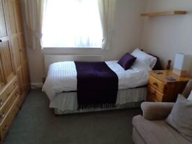 Large room to rent, very clean and newly decorated. Broadwater Worthing